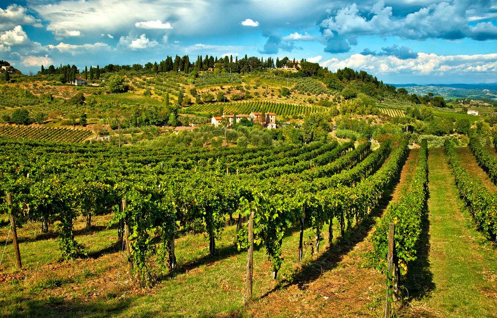 ROMAN COUNTRYSIDE & SURROUNDINGS
