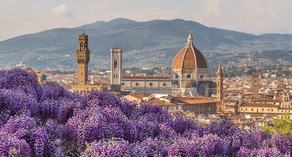 Highlights Of Florence From Livorno