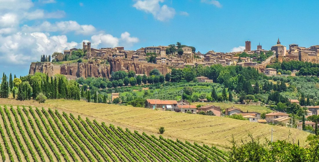 Wine & Oil Tasting Orvieto Countryside Small Group